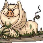 Бабин підсвинок – цісарів зять